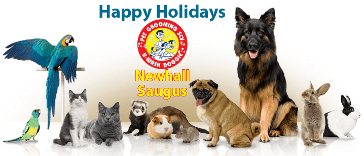 U-Wash Doggie Santa Clarita – Full Service Professional Pet Grooming